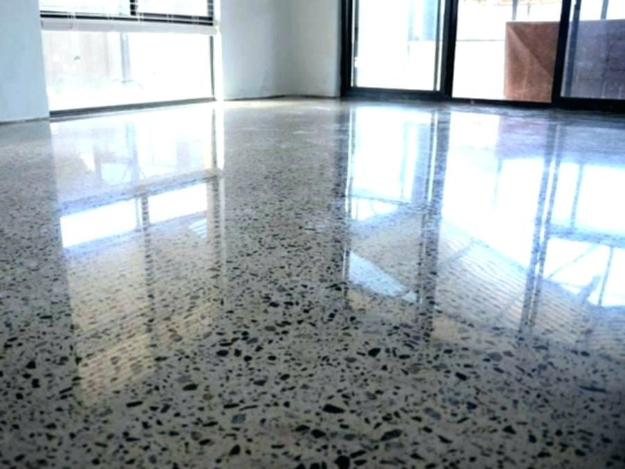 5 great reasons for polished concrete floors (says your dog)
